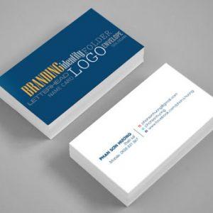 In ấn card Visit 02